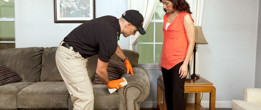 Columbus, IN carpet upholstery cleaning